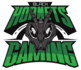 Black Hornets Gaming